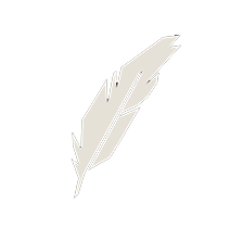 small white feather